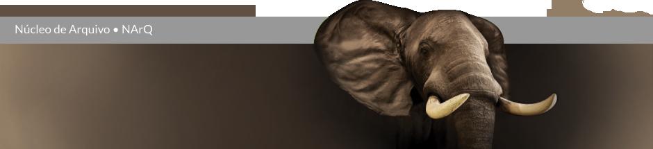 Núcleo de Arquivo